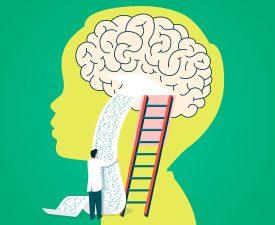 La gestión del conocimiento bajo la competencia 28