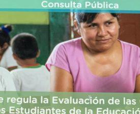 Proyecto de norma que regula la evaluación de competencias de los estudiantes de educación básica